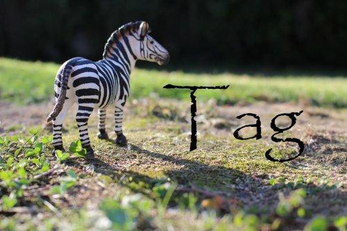 Tag !