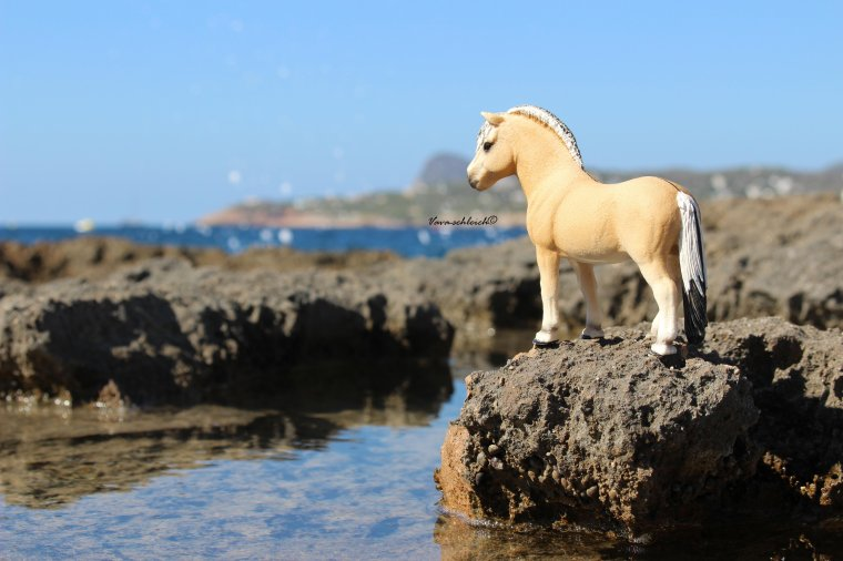 "Shooting Ibiza ~Partie 3~ ""In the rocks et Faro Verde"" 3/3"