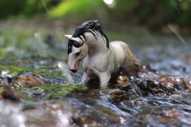 Shooting à la rivière ◊Partie 2◊