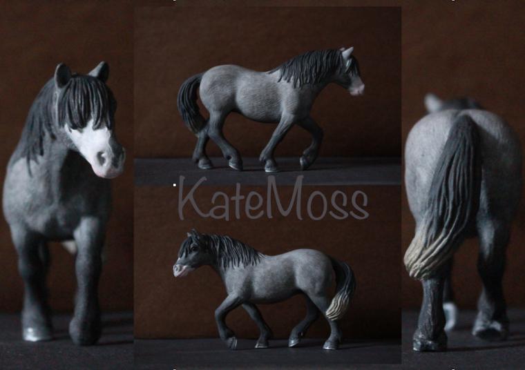 Custom ~ KateMoss de Valmosah ~