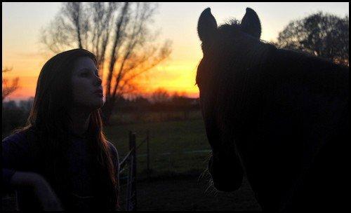 Le cheval est pour l'homme ce que sont les ailes pour l''oiseau. ♥