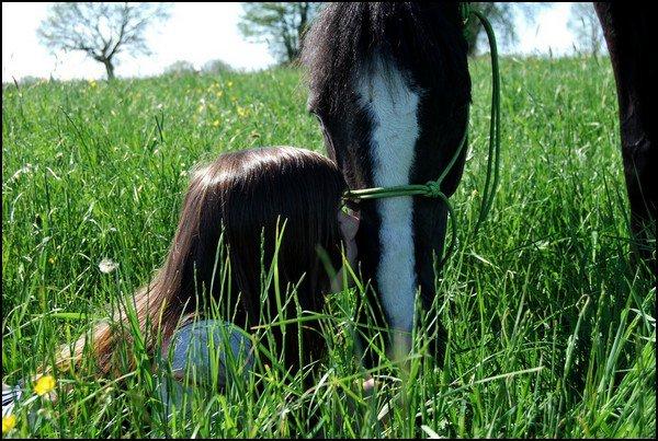 """""""Si un jour on tombe mon cheval et moi, relevez d'abord mon cheval."""""""