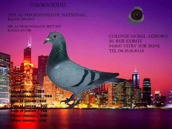 2em AS pigeonneaux National 2012