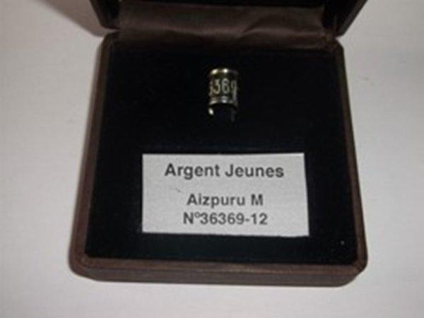 remise des prix du 16/03/2013  Secteur Est 21 em Région