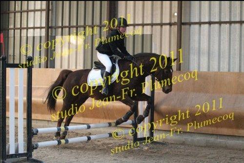 __.__.__Ne faire plus qu'un avec son cheval.