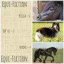 Photo de Equi-Fiction