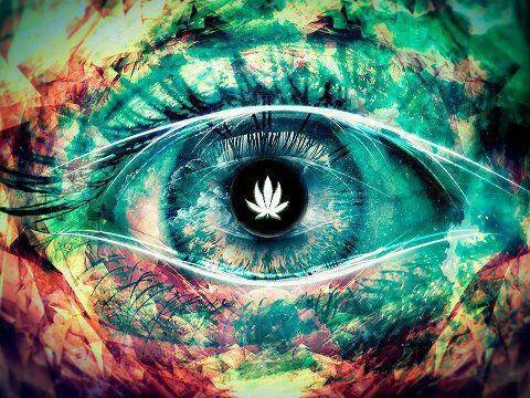 Dans cette oeil il y a la Vie