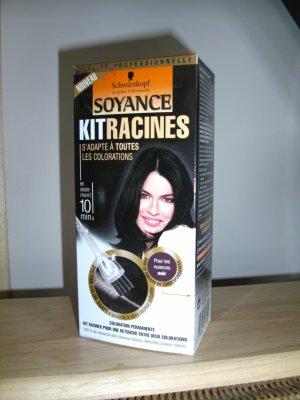 Kit racines cheveux blancs