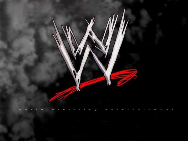 Qu'est ce que la WWE ?