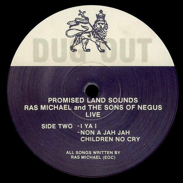 selection n400 - ras michael & sons of & daughters of negus - i ya i