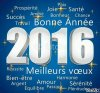 Bonne année 2016 à tous les ami  (es)