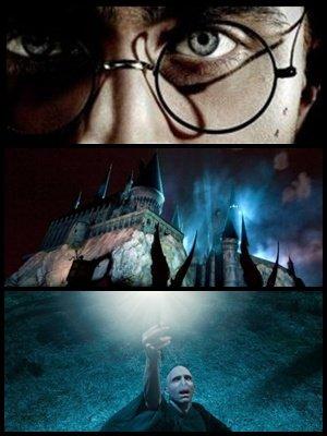 Edition speciale du DVD de la première partie, le parc à thème Harry Potter à depassé le million de visiteur, et la première partie de HP7 à était pre-sélectionné huit fois !