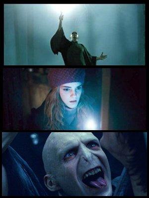 Nouvelle jaquette de la première partie avec Voldemort, et un extrait sera disponible en plus dans les bonus du dvd de la 1ere partie,et videos avec les effets speciaux des anciens films en ligne.