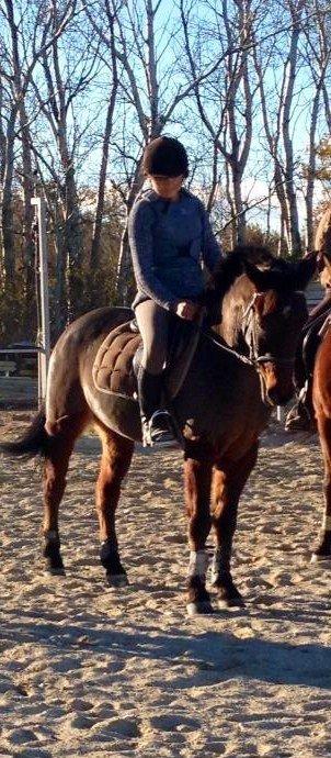 Petit cours pour un petit poney en or! :) <3