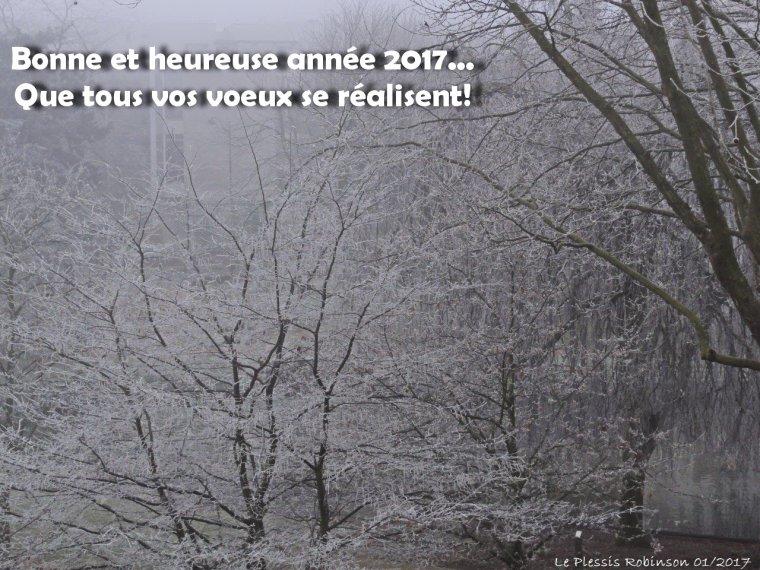 Bonne et heureusee année 2017!