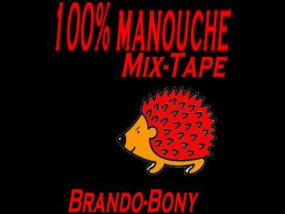 100%manouche Brando Feat Bony  réster a l'écoute merci
