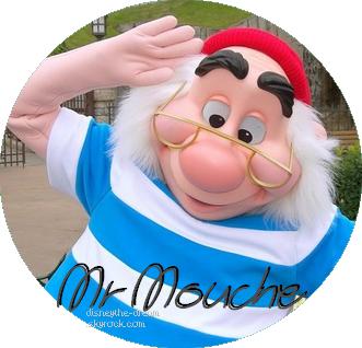 Zoom sur Mr Mouche.