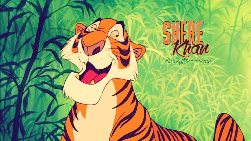 Zoom sur Shere Khan.