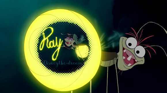 Zoom sur Ray.