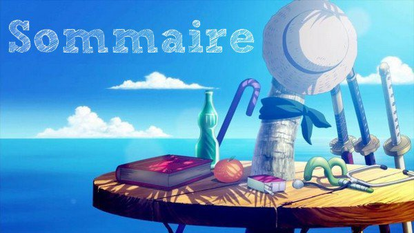 [ Sommaire ]