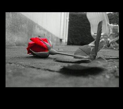 Je t'aimais .... et je referais pas l'erreur !