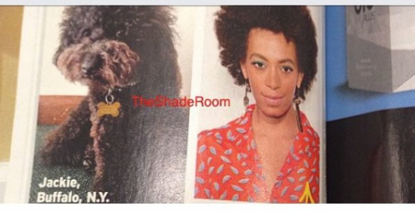 La polémique autour des cheveux Afro la fashion police dénoncer!!!!