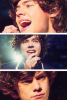 ● One Direction ; Harry Styles ● ღ