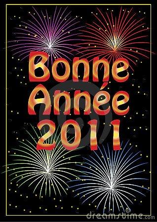 Bonne année 2011 à tous gros bisous