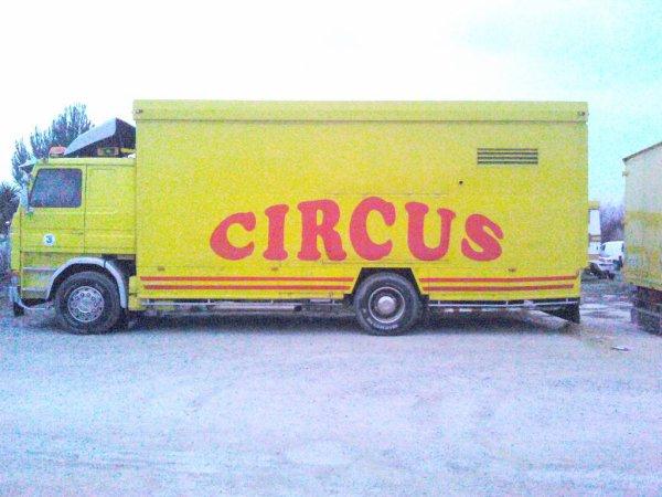 ciircus