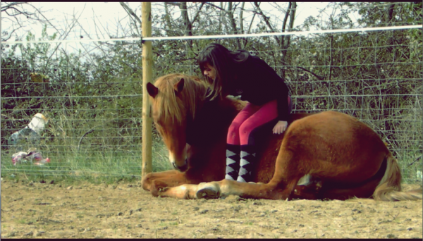 Le plus beau. ♥