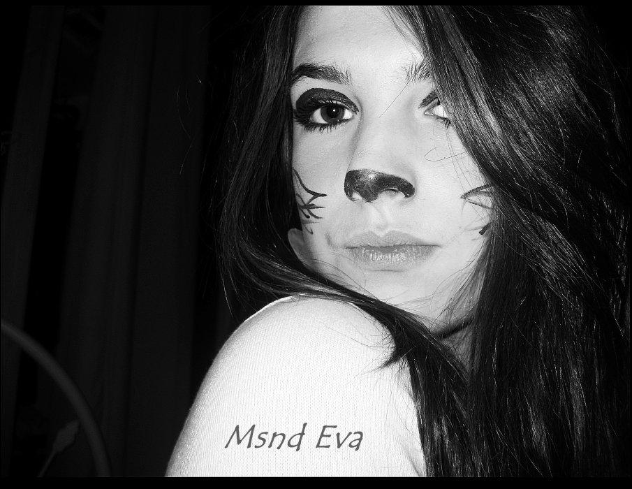 Eva xlL