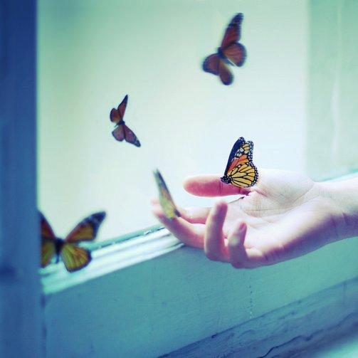 Envole-toi avant que quelqu'un te retienne. Vas-t'en avant que quelqu'un t'en empêche. Parts avec ton bonheur avant que quelqu'un te le vole.