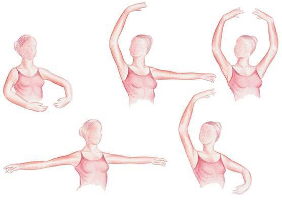 Position des bras