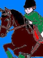 Des fictions de Karine pour les passionnés des chevaux