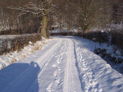 Le carpodrome sous la neige! (entrée)