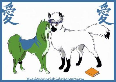 trensformation en chien groupe  n 4