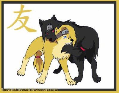trensformation en chien groupe  n 5