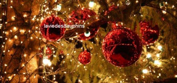 Joyeuses fêtes de fin d'année + idées pour 2013