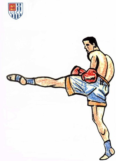Stage et détection équipe régionale de kick boxing