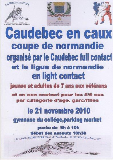 Coupe de normandie de light contact (DIMANCHE 21/11 à Caudebec en caux) enfants à vétérans