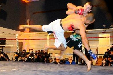 Un reportage trés intéressant sur le MMA