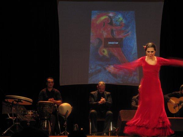 Association TATAFINA Festival de FLAMENCO à Beaucaire les 2 et 3 mars 2013 : des moments magiques !! Inscrivez-vous.