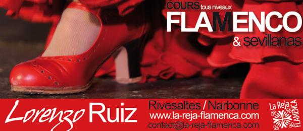 cours de flamenco à risevaltes