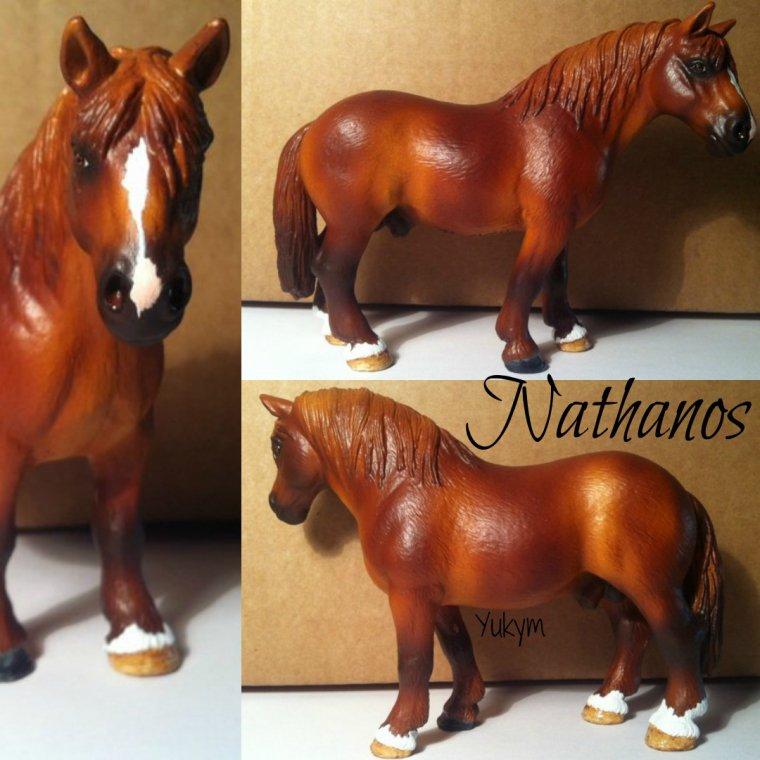 Nathanos de l'Ym