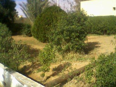 sud algerien