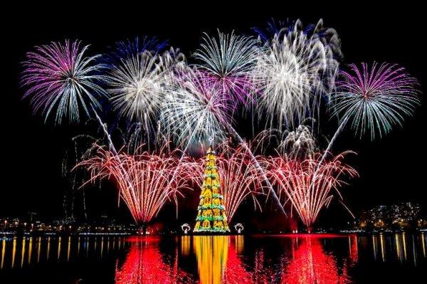 Brésil: Rio inaugure son arbre de Noël flottant, le plus grand au monde  est un noël de plus
