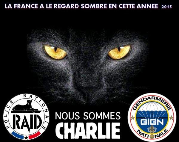LA FORS DE LA FRANCE IL RISQUE LEUR VIE POUR NOUS  Le GIGN Le Raid  LA POLICE LEUR DEVISE VOUS NE PASSEREZ PAS