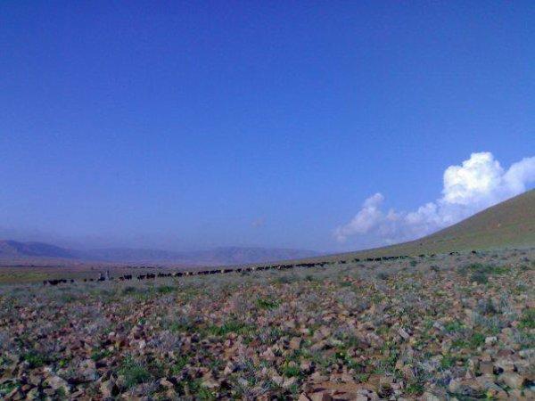 c'est lorsque il fait beau ou sahara marocaine