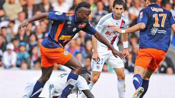 Montpellier : Mapou flatté