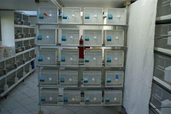 Cages de préparation